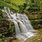 Liffey Falls 1 by traveller