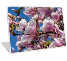 magnolia flower on tree Laptop Skin
