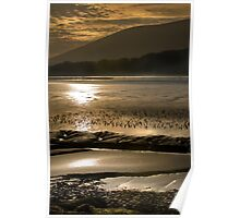 Solway Gold Poster