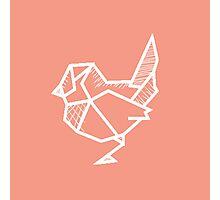 A sharp bird Photographic Print