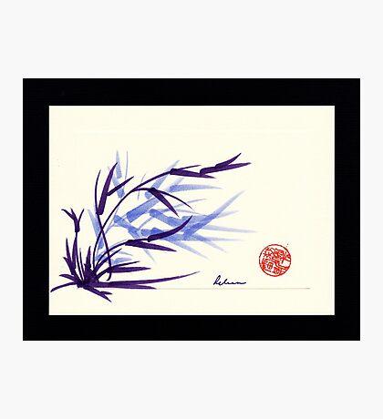 Huntington Gardens Plein Air Bamboo Drawing #2 Photographic Print