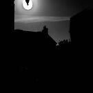 Evening Mood on Ile Tudy by ragman