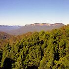 Blue Mountains of Australia by Alberto  DeJesus