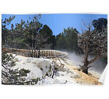 Mammoth Hot Springs....Yellowstone National Park... Poster