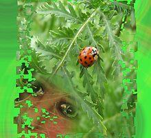 Nature versus Nurture by Sarah Russell