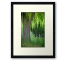 Weeping Willow Tree, Norfolk Framed Print