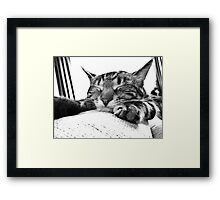 What`s the Point? Framed Print
