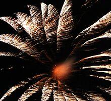 Fireworks Flower by Bixie