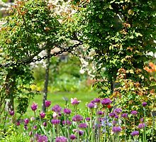 Spring flower arrangements - Old Westbury Gardens by bertulasld