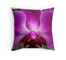 Contemplation    ^ Throw Pillow