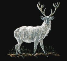 Albino Stag Tee Shirt by sharpie