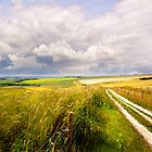 A Summers Day On The South Downs by Leon Ritchie