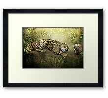 The Jaguar and the Peacock........ Framed Print