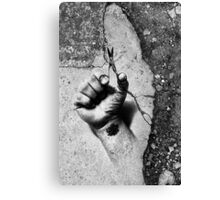 Small But Deadly Canvas Print