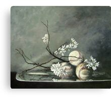 Baseballs and Spring Blossoms Canvas Print