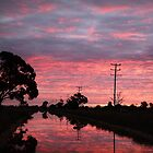 Vivid Sunset over Country Channel by Julie Sleeman