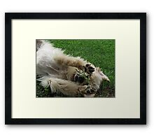 Puppies Just Want To Have Fun! Framed Print
