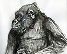 Primate Profile by WoolleyWorld