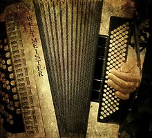 Accordian Player by Margi