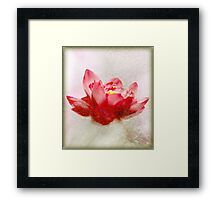 as our minds intertwine Framed Print