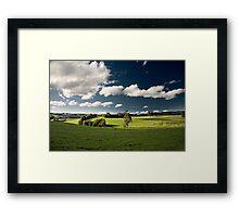 Saturday Greenery Framed Print