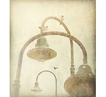 Conversational Photographic Print