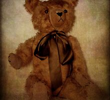 Teddy Bear Tales by Margi
