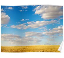 Wheatbelt Country Poster