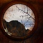 Through a Glass Darkly by Margi