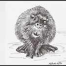 One-Eyed Beaver by Kat Anderson