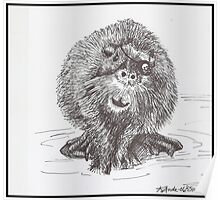 One-Eyed Beaver Poster