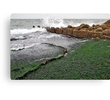 At the base of the Brouwersdam..... Canvas Print
