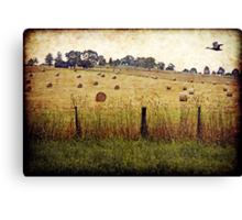 The Road to Yarra Glen Canvas Print