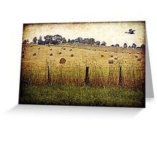 The Road to Yarra Glen Greeting Card