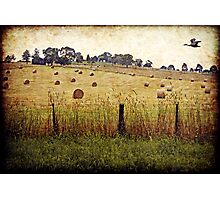 The Road to Yarra Glen Photographic Print