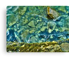 Moss and Stones Canvas Print