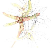 Bromeliad - Resilience by alisonboldys