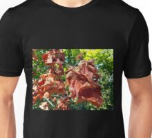 Selective focus on maple branch with dried leaves Unisex T-Shirt