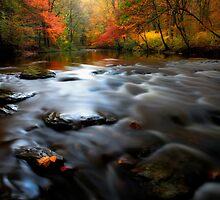 Octorara Creek in Autumn Color by KellyHeaton