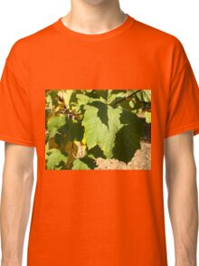 Green leaves closeup that begin to turn yellow Classic T-Shirt