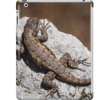 Mountain Lizard Sunbathing iPad Case/Skin