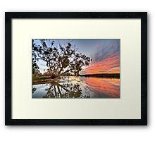 River Red Framed Print