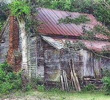 Old Home Place by suzannem73