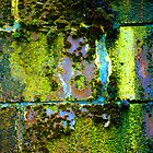 Toxic Moss by christiane
