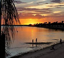 Florida Beauty by Laurie Perry