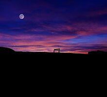 The bench of Zabriskie Point by Alex Preiss