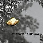 A LEAF IN A PUDDLE by Heidi Mooney-Hill