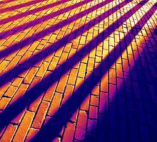 Stripes by Chuck Taylor