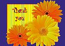 Thank You Card Gerbera Daisies by MotherNature