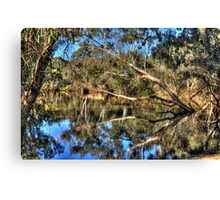 A tree in the river Canvas Print